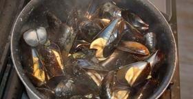 Friherrinnans skaldjursresa - weekendpaket hos Strandflickorna