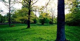 Sättra ängar - naturreservat