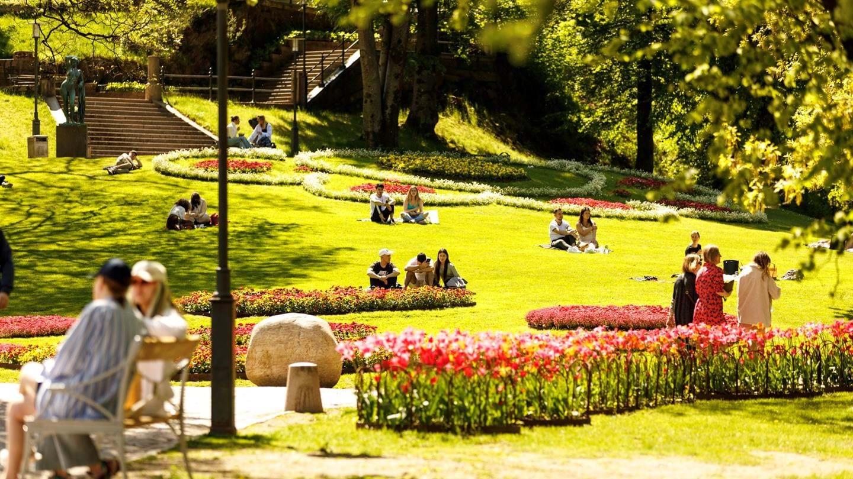 Stadsparksprogrammet 2021