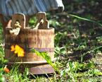 Workshop - Kompostera med Bokashi