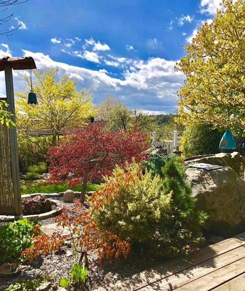 Visning av privat trädgård på Orrhammar Flen. Vi tillhör Sällskapet Trädgårdsamatörerna STA och har under 10 år visat vår trädgård för bussällskap och besökare varje sommar.